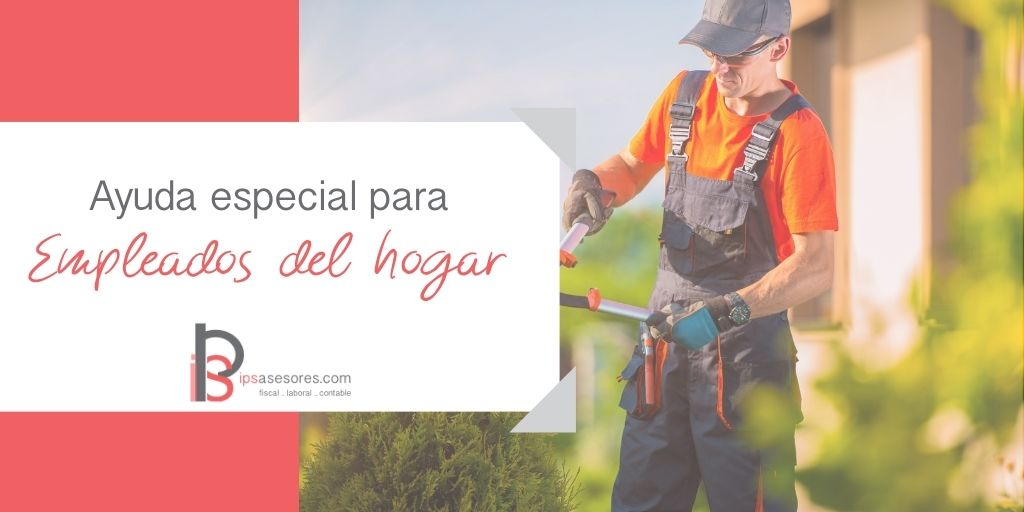 ayuda para empleados del hogar